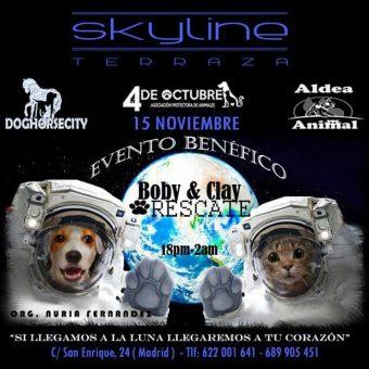 Evento Animalista